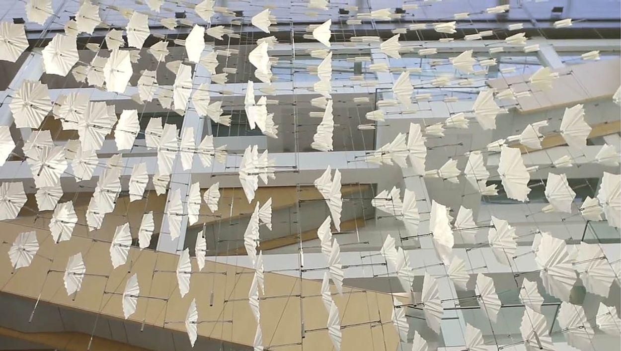 Afbeelding van Web Draait Door: papieren vogels