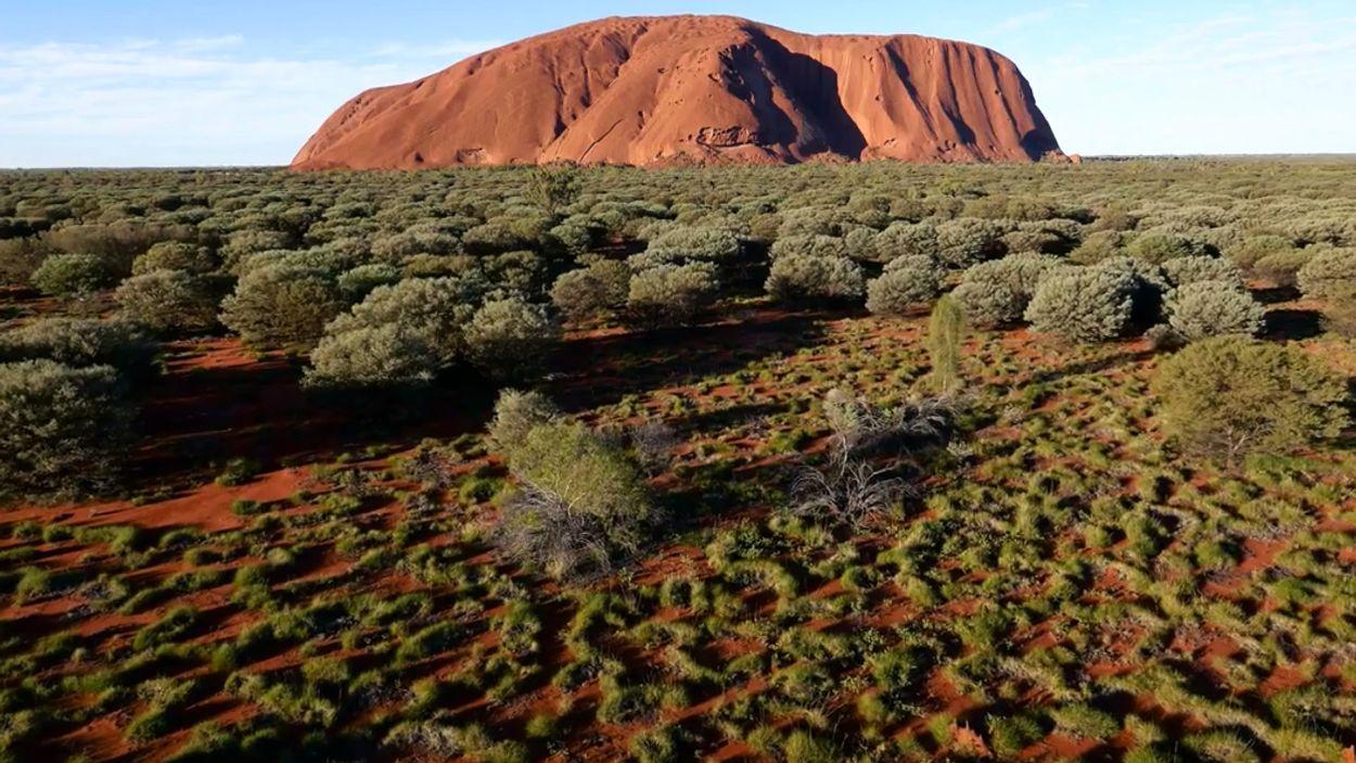 Afbeelding van Web Draait Door: Uluru vanuit de lucht