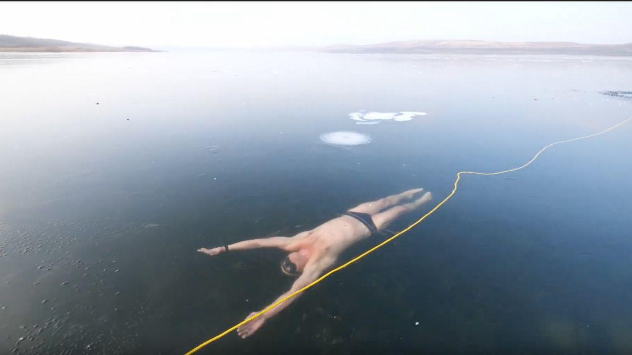 Afbeelding van Web Draait Door: duiker zwemt meters onder het ijs door