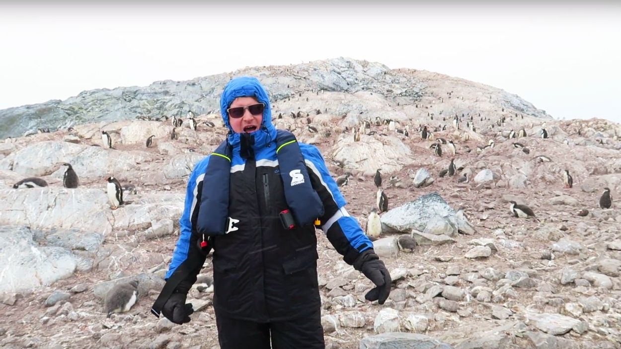 Afbeelding van Web Draait Door: Operaconcert voor pinguïns eindigt rampzalig
