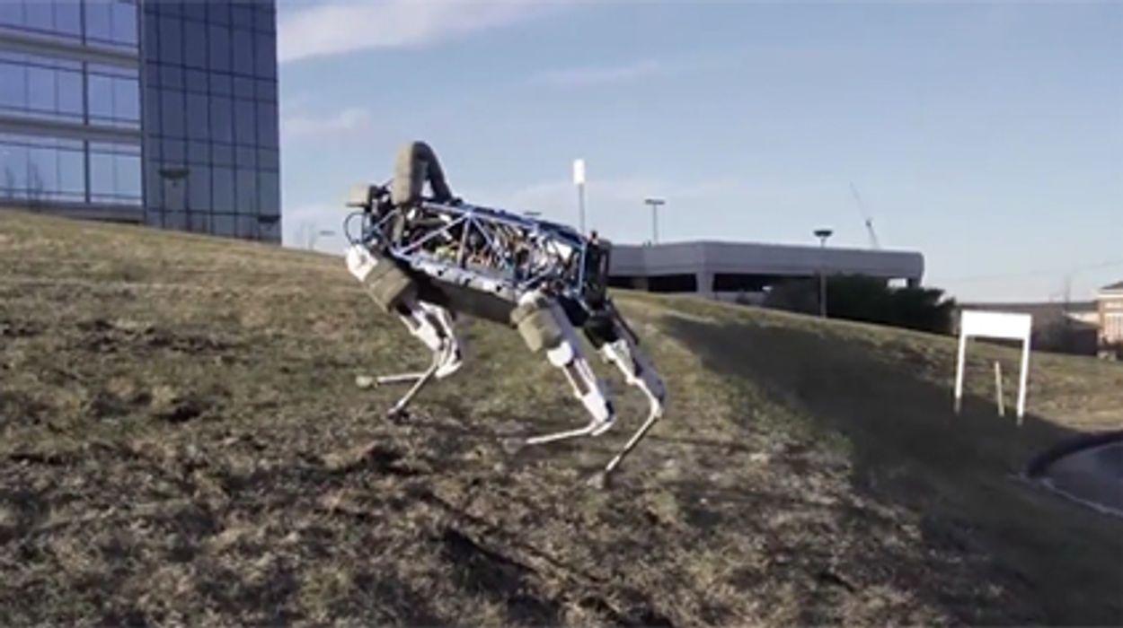 Afbeelding van Web Draait Door: Ontmoet robothond Spot