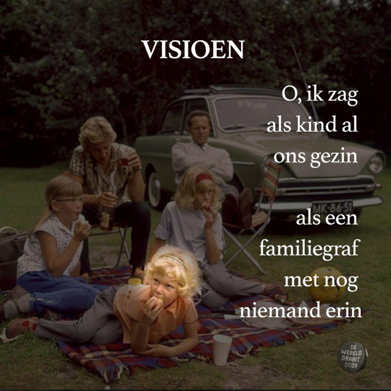 VISION Levi