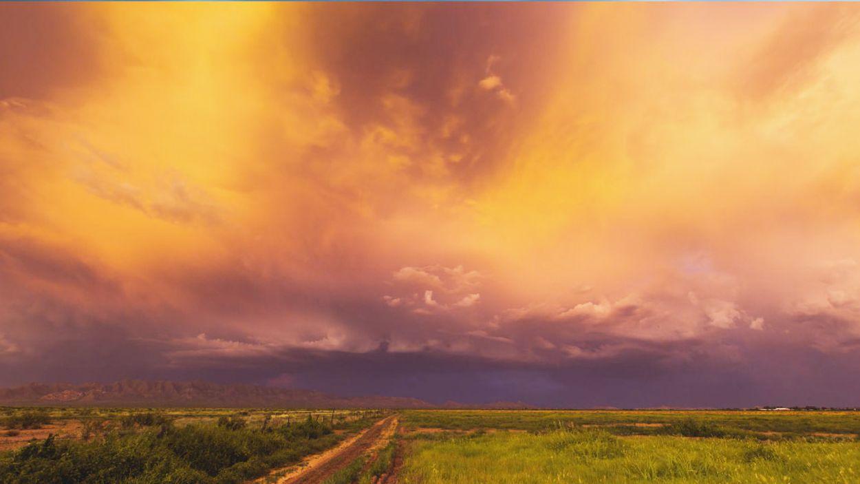 Afbeelding van Web Draait Door: de moesson in Amerika