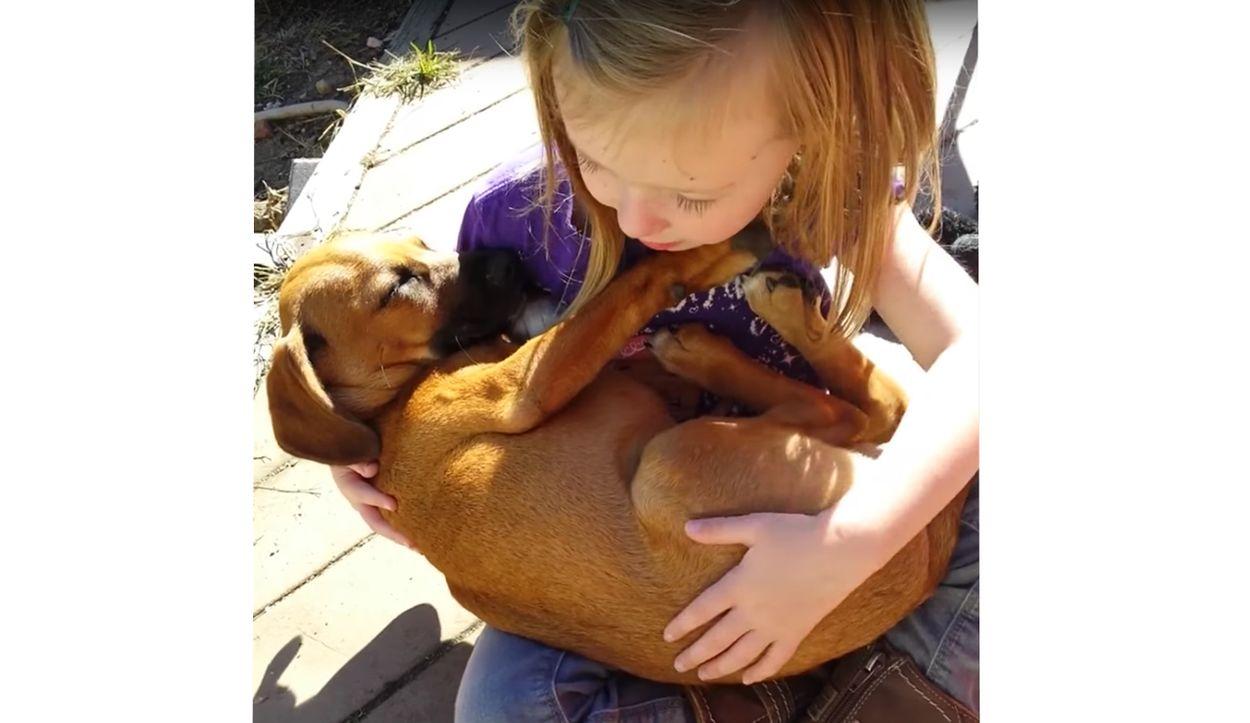 Afbeelding van Web Draait Door: peuter zingt slaapliedje voor puppy