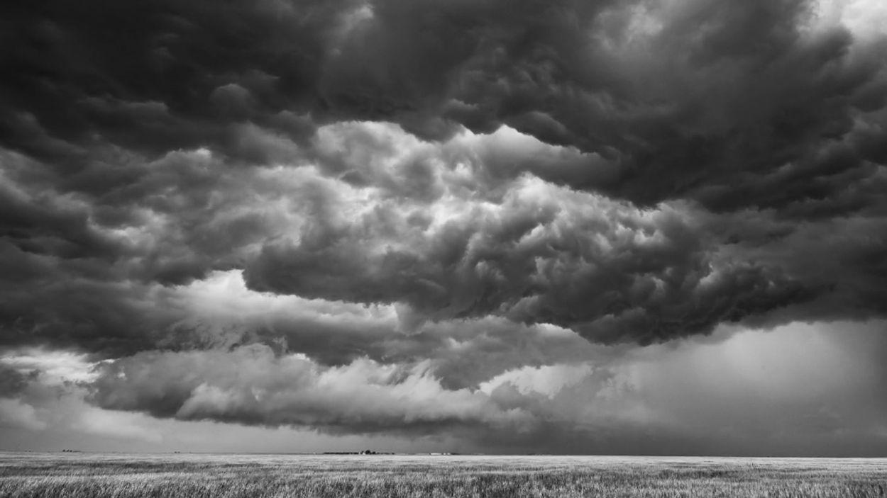 Afbeelding van Web Draait Door: Spannende storm