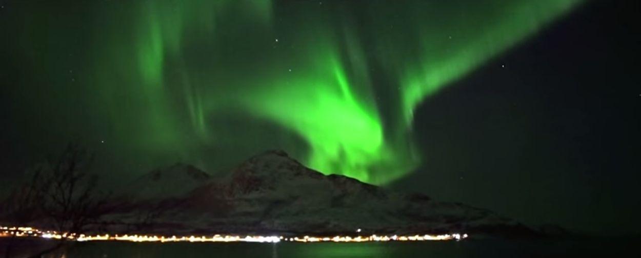 Afbeelding van Web Draait Door: Walvissen onder het Noorderlicht