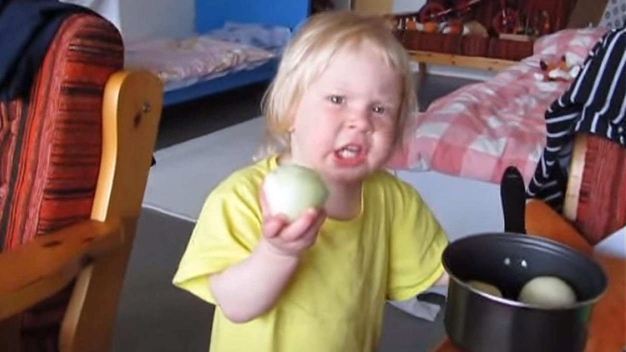Afbeelding van Web Draait Door: kind eet ui