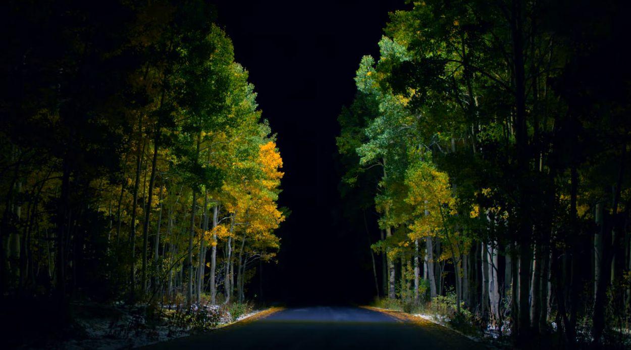Afbeelding van Web Draait Door: licht in de duisternis