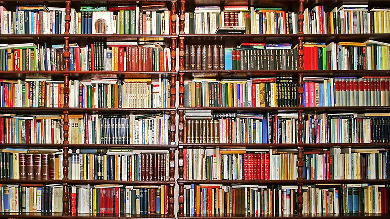 Afbeelding van Nieuw boekenpanel is bekend!