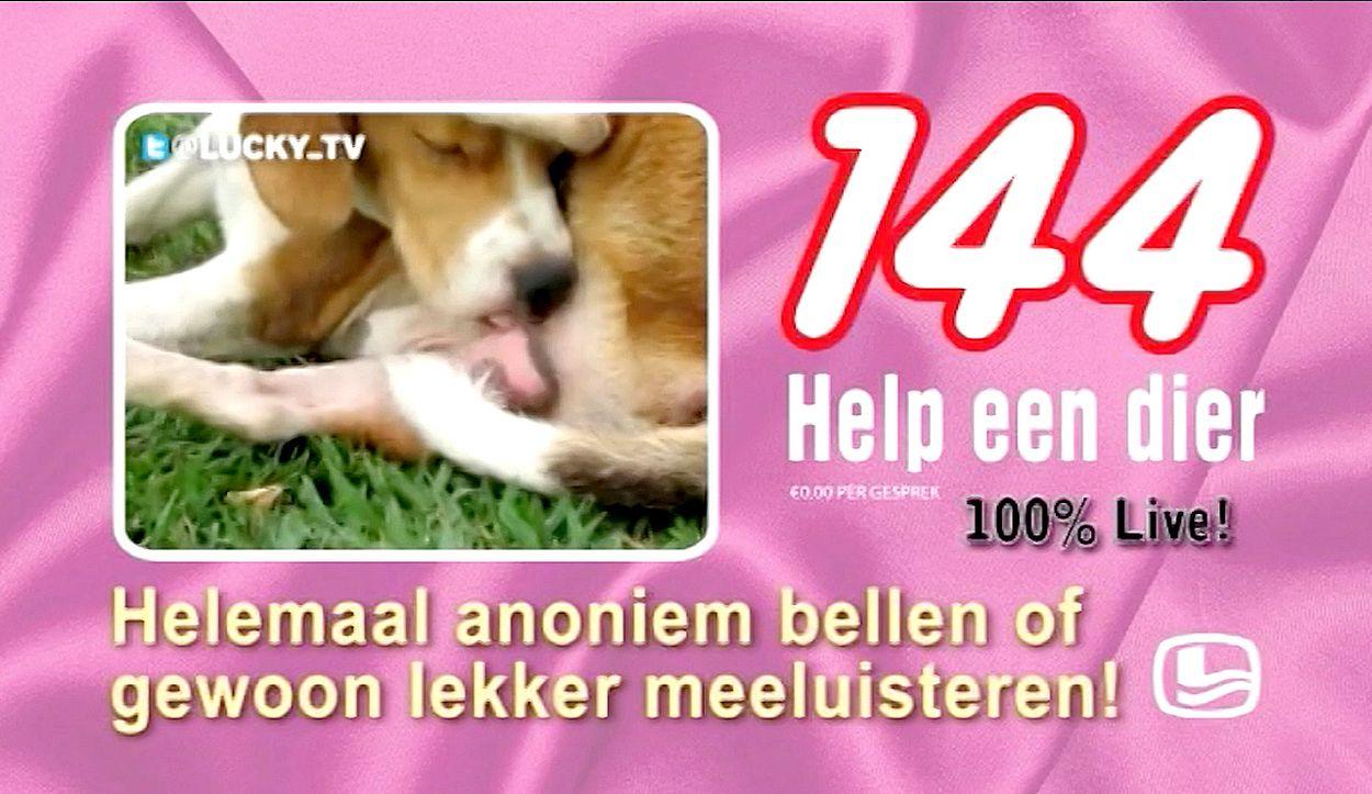 Afbeelding van LuckyTV compilatie: Reclames