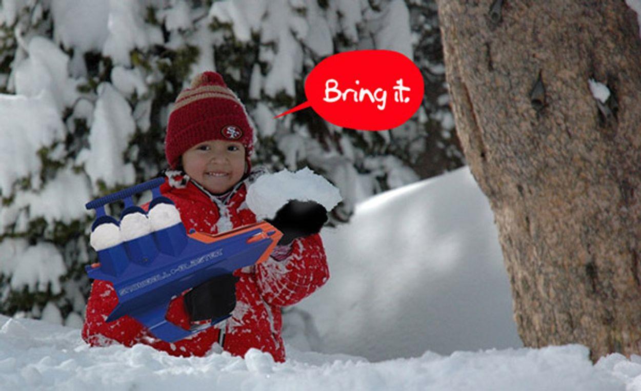 Afbeelding van Web Draait Door: Sneeuwbalgeweer