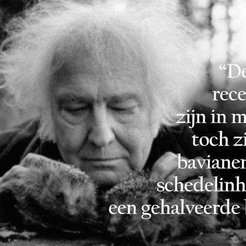 Afbeelding van De beste quotes van Jan Wolkers